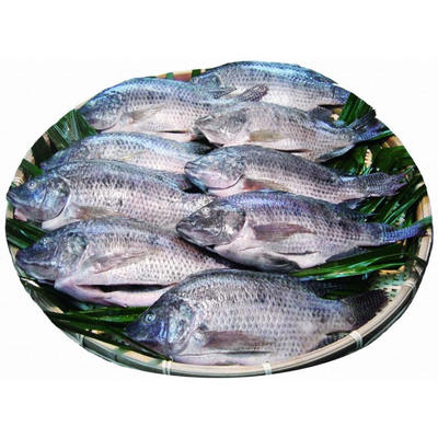 Cleaned Tilapia 1kg (2-3pcs)